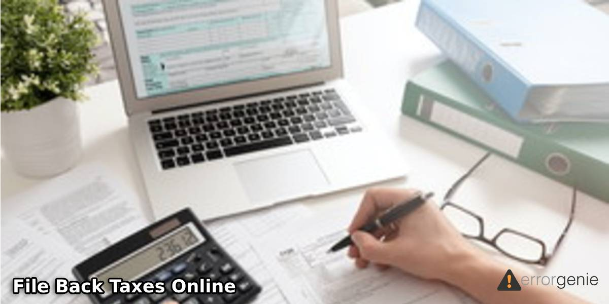 How to File Back Taxes Online Easily