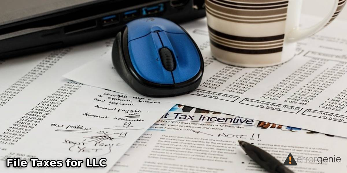 How to File Taxes for LLC with No Income